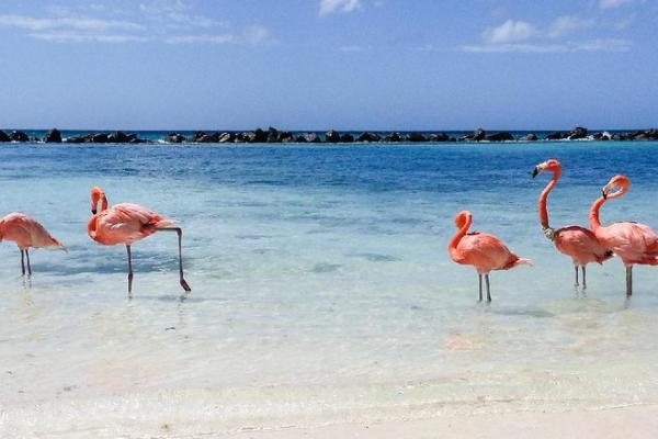 Pulau Indah Di Dunia